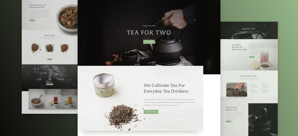 tea-shop-layout-pack-featured-image